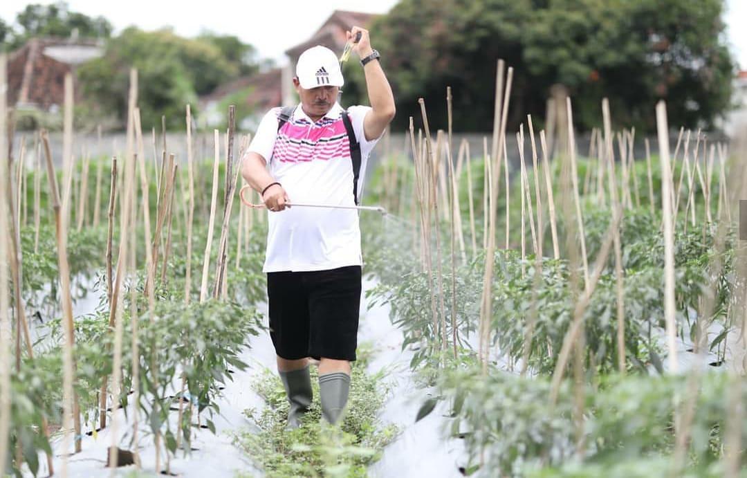 Wali Kota Maidi menyalurkan hobbinya dalam berkebun sekaligus melakukan Social Distancing.